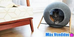 Accesorios para gatos que más se venden
