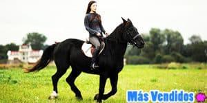 Accesorios para caballos más vendidos