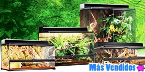 Accesorios reptiles y anfibios más vendidos
